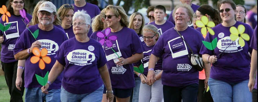 Groups of walkers take part in the Quincy Walk to End Alzheimer's Thursday night at Clat Adams Park. Organizers expect this year's walk, the 17th annual for the Quincy Area Branch of the Alzheimer's Association, to generate more than $80,000. About 700 people were expected to take  part in the event. (H-W Photo/Phil Carlson)